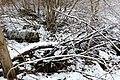 15-01-31-Franzosenbunker-Eberswalde-RalfR-DSCF2036-14.jpg