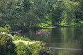 15-23-0411, concord river - panoramio.jpg