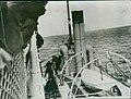 1914 Pilote debout sur le pont du remorqueur Eureka, à côté de l'impératrice d'Irlande.jpg
