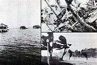 1928 Okeechobee Aftermath.jpg