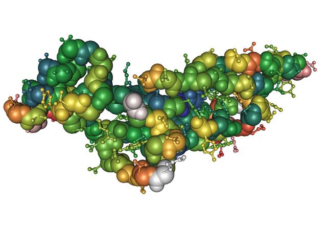 HGF (Human Growth Factor), en mänsklig tillväxtfaktor.
