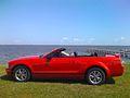 2005 Ford Mustang Convertible.jpg