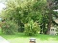 2008 0707 30945 Meran Thermen Park R0062.jpg