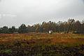 2010-10-30 Geeste, Moormuseum 037 (5206941075).jpg