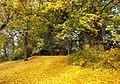 20121029035DR Dresden-Südvorstadt Beutlerpark Herbst.jpg