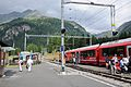 2013-08-09 09-59-54 Switzerland Kanton Graubünden Alp Grüm Alp Grüm.JPG