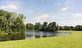 2013-09-02 Auensee, Rheinaue, Bonn IMG 0890.jpg