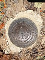 2014-06-28 12 30 06 United States Coast and Geodetic Survey marker at the summit of East Twin in the Adobe Range near Elko, Nevada.jpg