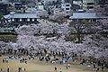 20160403 Himeji-Castle 3349 (26826015575).jpg