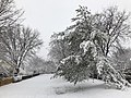 2018-03-21 12 29 30 View along a snow-covered walking path in the Franklin Glen section of Chantilly, Fairfax County, Virginia.jpg
