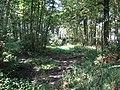 2018-07-26 Pond Plantation, Trimingham (2).JPG