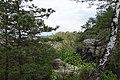 20210518. Sächsische Schweiz.Rauenstein.-167.jpg