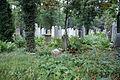 2333viki Cmentarz Żydowski na Ślężnej. Barbara Maliszewska.jpg