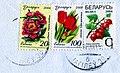3 марки Белоруссии со штемпелем Могилёва.jpg