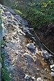 555594032Beitou Stone Nature Reserve, Taipei City+2411215+002+DSC 0206.jpg