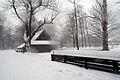 8705m Park w Pszczynie - chata w skansenie. Foto Barbara Maliszewska.jpg