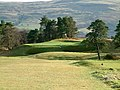 9th hole on Kings Course at Gleneagles - geograph.org.uk - 81049.jpg