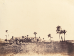 ALBUM OF EGYPT AND ALGERIA, 4.PNG