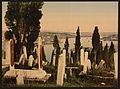 A part of the Eyoub (i.e., Uyüp) cemetery, I, Constantinople, Turkey-LCCN2001699430.jpg