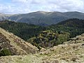 Above Mere Gill - geograph.org.uk - 1285486.jpg
