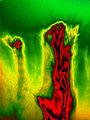 Abstract Green Red.jpg