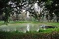 Acharya Jagadish Chandra Bose Indian Botanic Garden - Howrah 2011-02-20 1523.JPG