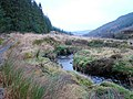 Afon Hore, looking downstream, beside the Wye Valley Walk - geograph.org.uk - 1121720.jpg