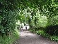 Afternoon stroll - geograph.org.uk - 864260.jpg