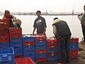 Agadir - Port P7039036.jpg