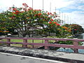 AguinaldoShrinejf0879 07.JPG