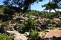 Alan yaylası - panoramio.jpg