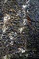 All Saints Church Stourmouth Kent England - mixed stone wall at west.jpg