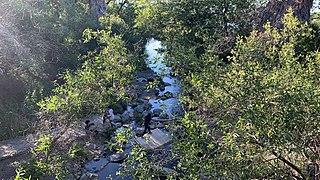 Alamitos Creek