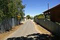 Alpha Lane.jpg
