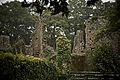 Ambiance au chateau de Ranroët.jpg