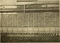 American telephone practice (1905) (14569636119).jpg