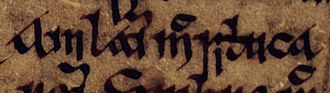 "Suibne mac Cináeda - The name of Amlaíb mac Sitriuc, a nearby contemporary of Suibne, as it appears on folio 16v of Oxford Bodleian Library Rawlinson B 488: ""Amlaim mac Sitriuca""."