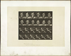 Animal locomotion. Plate 545 (Boston Public Library).jpg