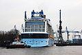 Anthem of the Seas im Haven HH Einfahrt ins Dock 2015-03-24 19-40-27 - 0232.JPG