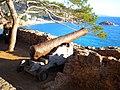 Antiguo cañón. Baluarte de las murallas de Tossa de Mar, Provincia de Gerona (España) - panoramio.jpg