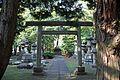 Aoyama Cemetery - Flickr - GregTheBusker.jpg