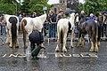 Appleby Horse Fair (7172420163).jpg