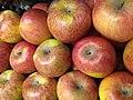 Apples of Kallidaikurichi.jpg