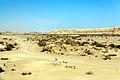 Arava 0905.jpg
