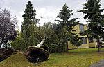 Arctic front storms through Alaska, leaves a mess 120905-F-BP133-299.jpg