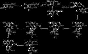 Aristolochic acid - Biosynthetic pathway of aristolochic acid