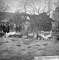 Artis 125 jaar dierentuin koningin Juliana bracht een bezoek, hier bij de flami, Bestanddeelnr 915-1161.jpg