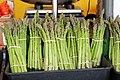 Asparagales - Asparagus officinalis - 1.jpg