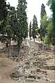 Athens Acropolis (27821560144).jpg