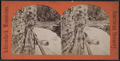 Au Sable Chasm. The Long Gallery, from Robert N. Dennis collection of stereoscopic views.png